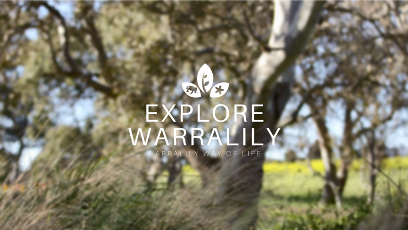 Explore Warralily