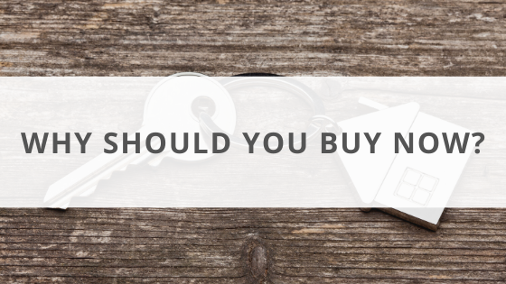 Why should you buy now?